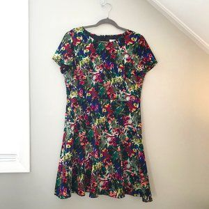 J. Crew Factory Floral Fit and Flare Dress (14)